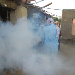 Fumigation against mozzies