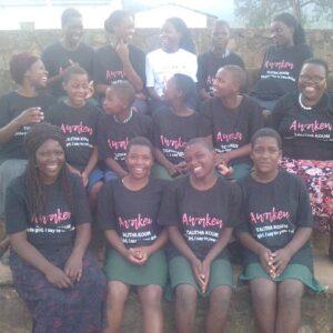 Education girls zimbabwe